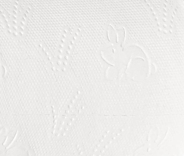 tissue paper products parent rolls